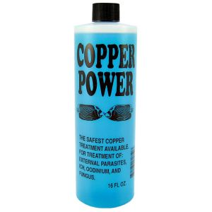 Copper Power (Endich)